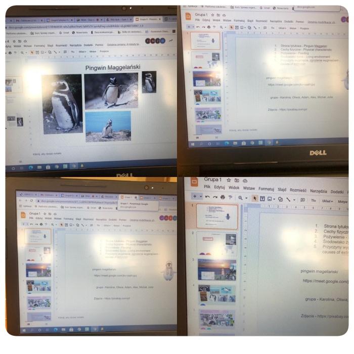 Zdjęcia z zajęć w ramach projektu